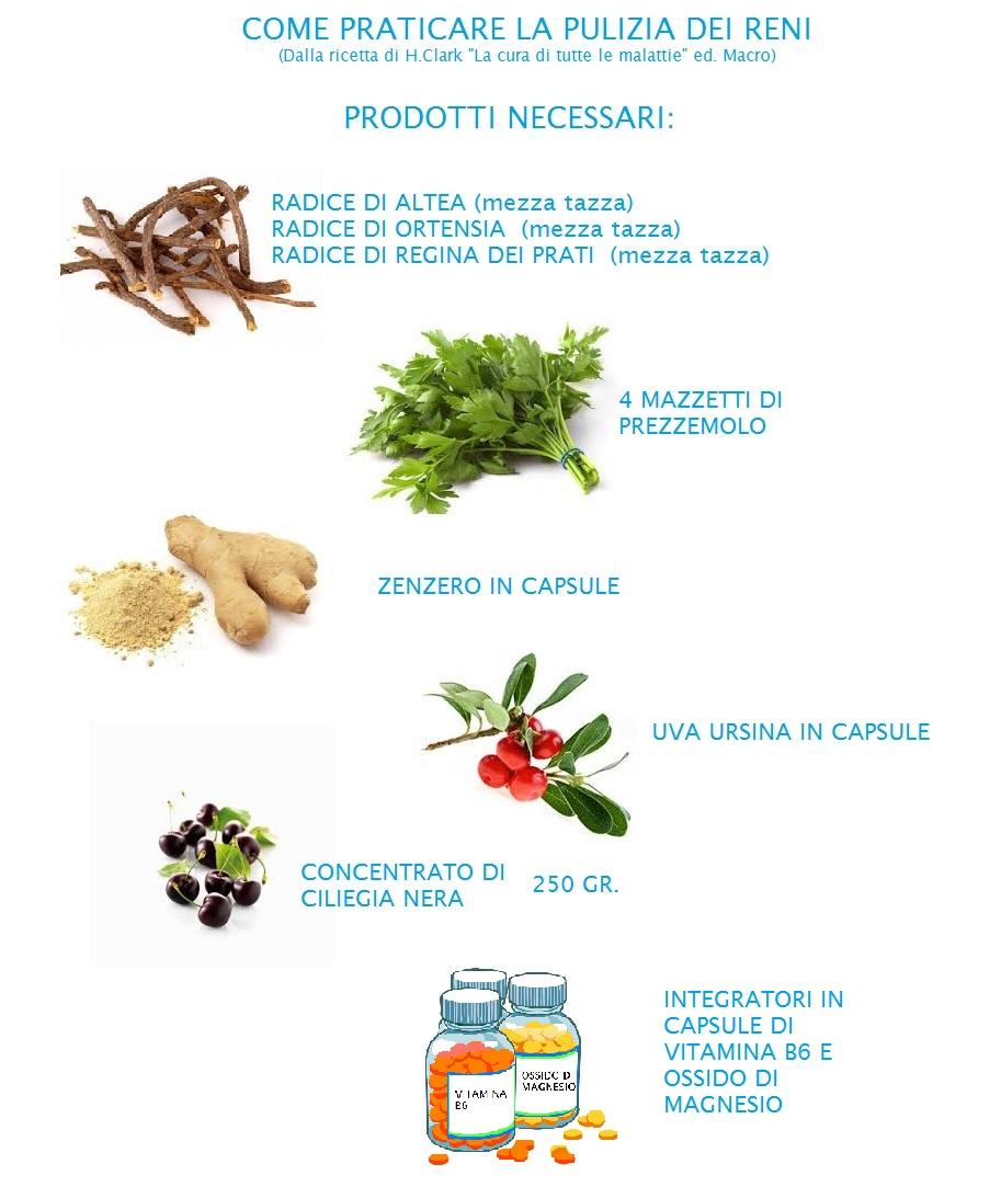 pulizia del fegato renale naturale dieta detox quanto si dimagrisce