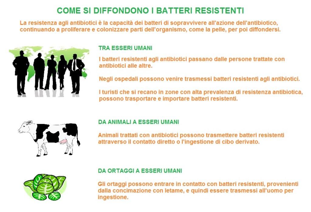 come si diffondono i batteri resistenti