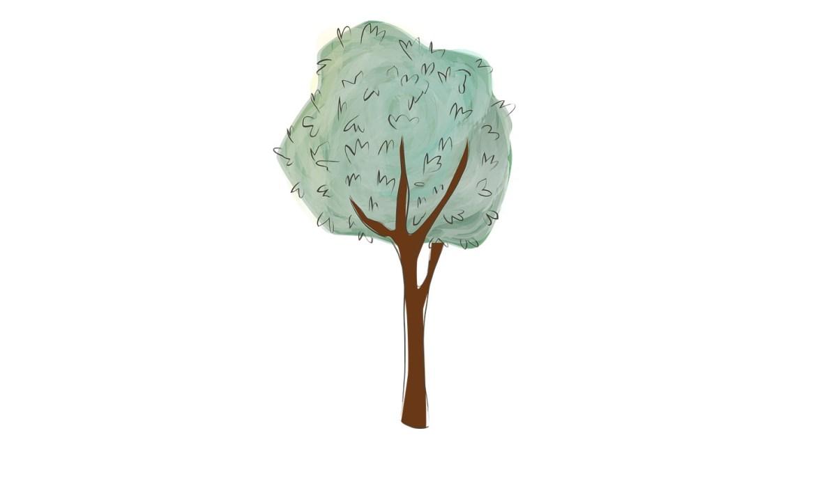 Disegna il tuo albero e scopri chi sei veramente for Disegna il tuo giardino