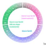 Come funziona il ciclo mestruale: calcola i giorni fertili e il periodo dell'ovulazione