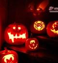 Halloween 2008 - die Hausgemeinschaft hat geschnitzt!