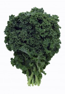 Kale is a food high in sulfur, supporting joint health in horses.