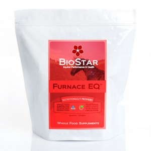BioStar's Furnace EQ to help promote circulation and healthy hooves.