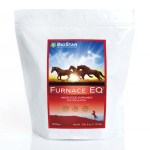 Furnace EQ by BioStar