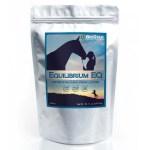 Equilibrium EQ by Biostar US