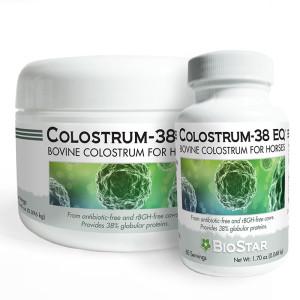 Colostrum EQ for horses