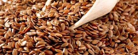 Flax seeds - close-up