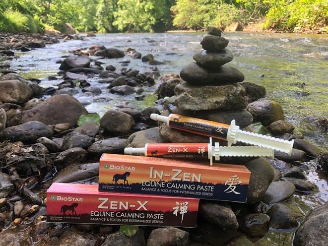 Zen Calming Paste Syringes | BioStar US
