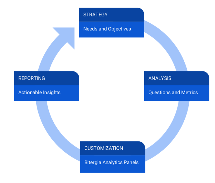 software development data strategy process