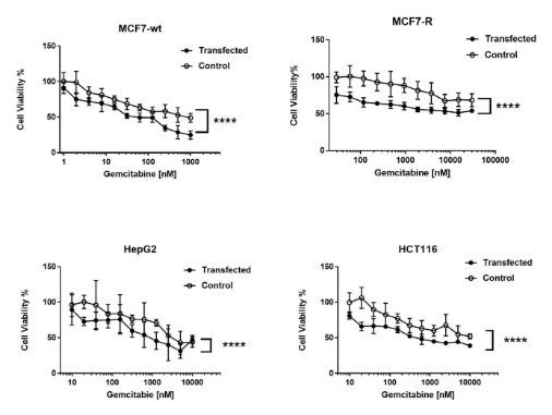 Cell viability of MCF7-wt, MCF7-R, HepG2 and HCT116 cancer cells after transfection with DmdNKΔC20; each experiment was performed in triplicate