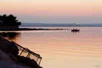 Vrša na obali mora, Poljana, Otok Ugljan, Hrvatska