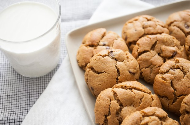 Close-up of Peanut Butter Cookies with Chocolate Chips