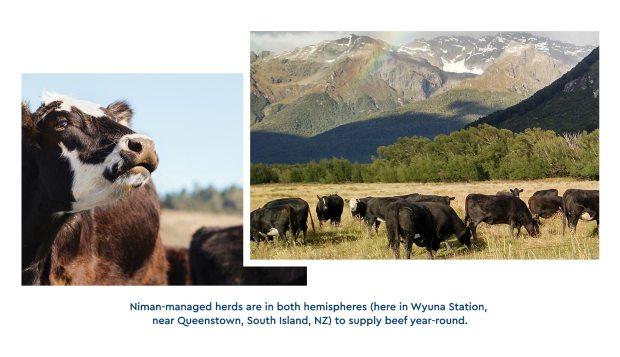 031617-Blog-BN-Insert-4-NZ-ImageCaptions