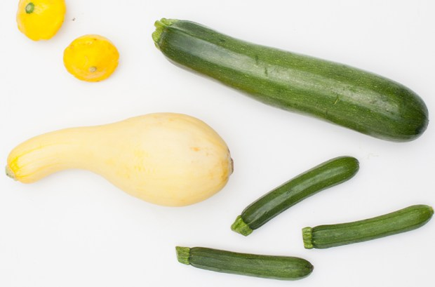Your Guide to Summer Squash