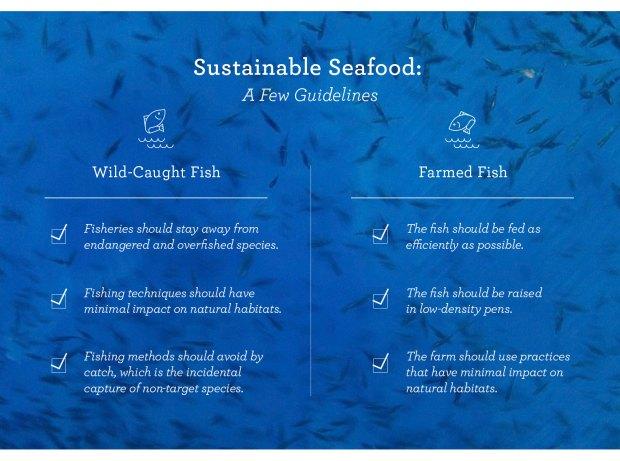 0912-farm-v-wild-fish_blog_04