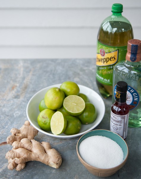 Ginger Gin Punch Ingredients