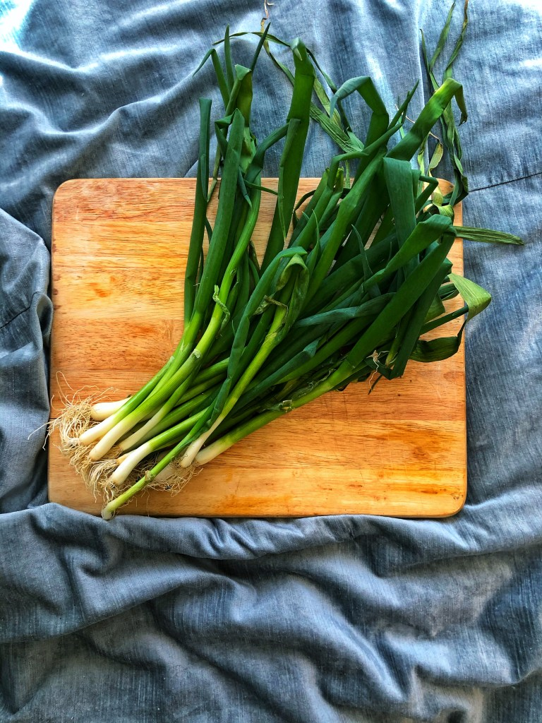 one bunch of scallions