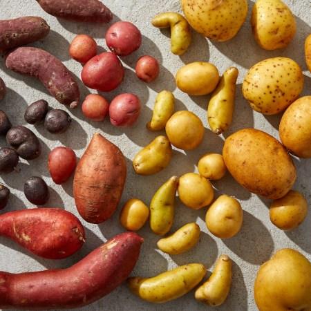 types-of-potatoes