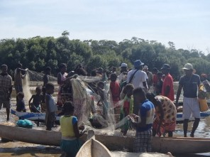 Emmanuel (far right), Blue Ventures' Community Organiser, checking the pirogues and nets being emptied