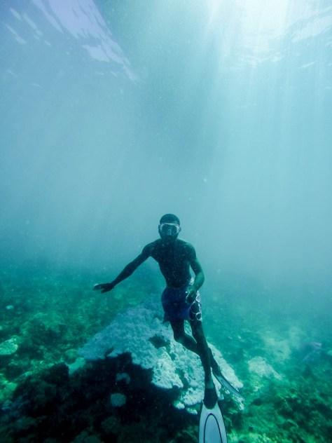Free diver mapping seagrass habitat