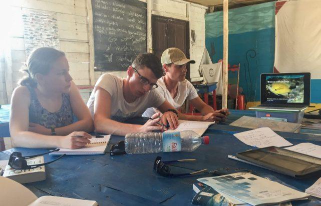 Blue Ventures expedition volunteers learn fish species from Field Scientist Joe | Photo: Doug Brown