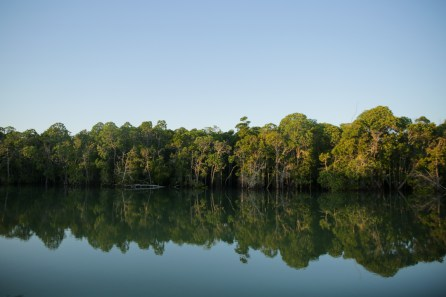 Surrounded by mangroves | Photo: Gabriel Diamond