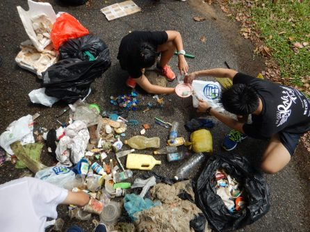 The group cleanup in Singapore