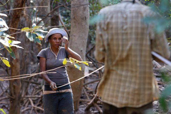 Lalao measuring mangroves using a hypsometer | Photo: Garth Cripps