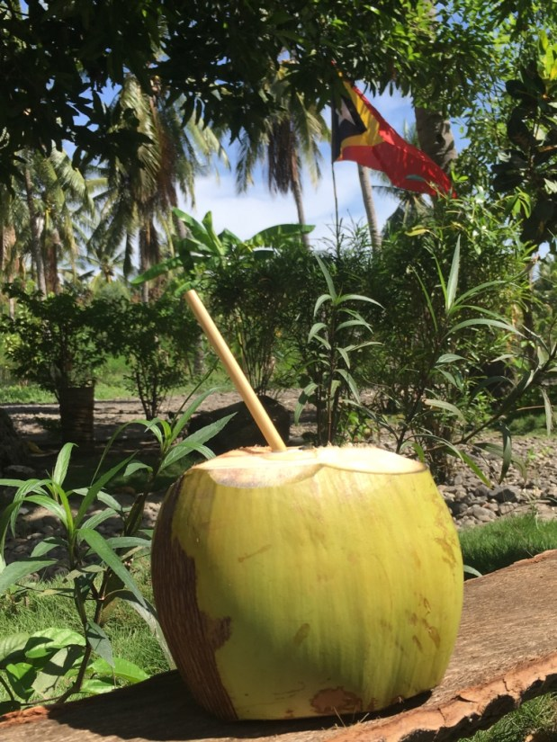 A refreshing coconut