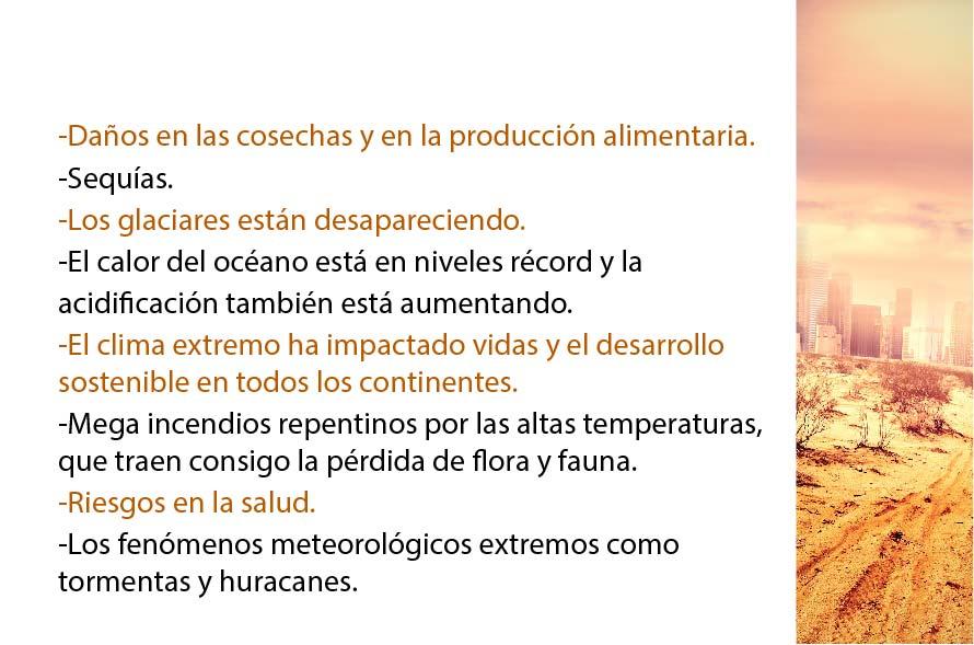 CCVIDA.03