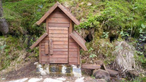 W łużyckich Horach - wodopój