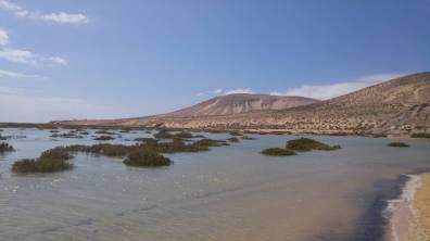 Fuertaventura - Laguna Sotavento 5