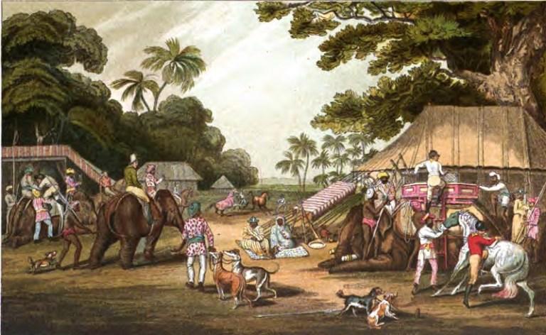 сборы на охоту индия 2