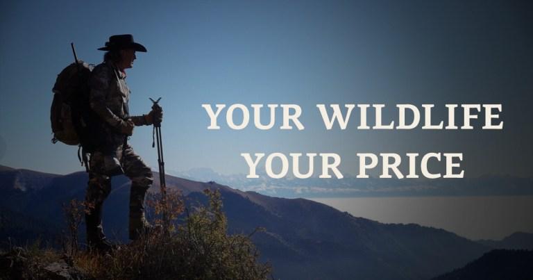 Your wildlife your price