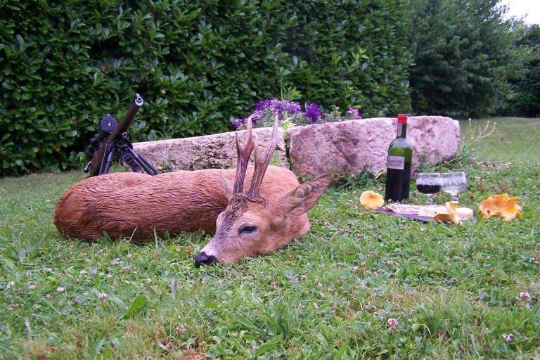 Roe deer trophy in iconic French setting