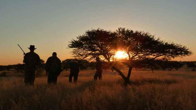 african hunting scene