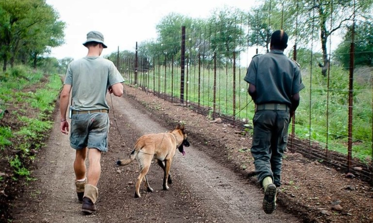 An anti-poaching team patrolling the perimeter
