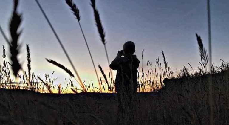 A child in a field looking through binoculars