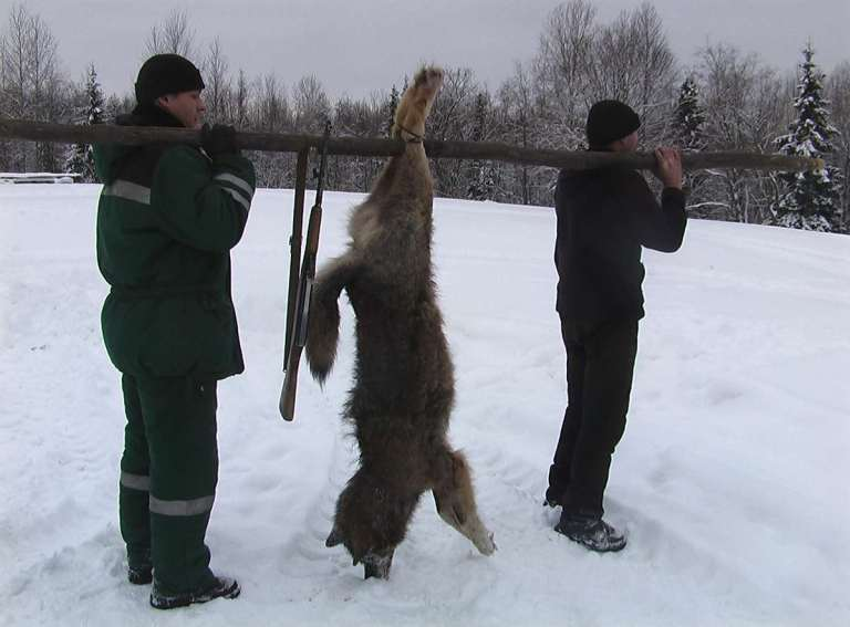 Two hunters and a wolf over a pole