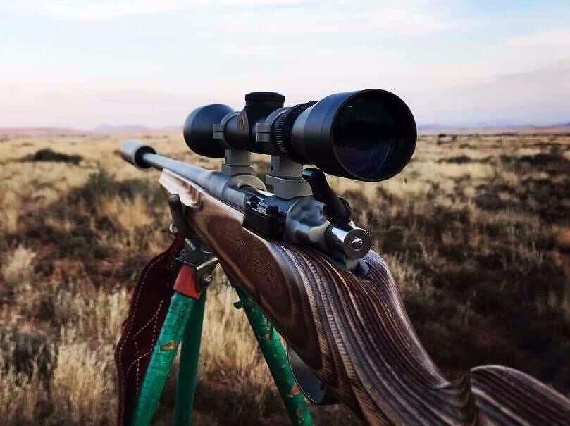 Hunting rifle on sticks