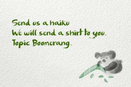 BoomerangHaiku