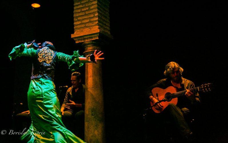 Flamenco 7