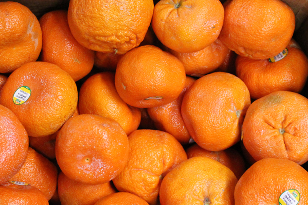 Get to know the look and peel of your Mandarins