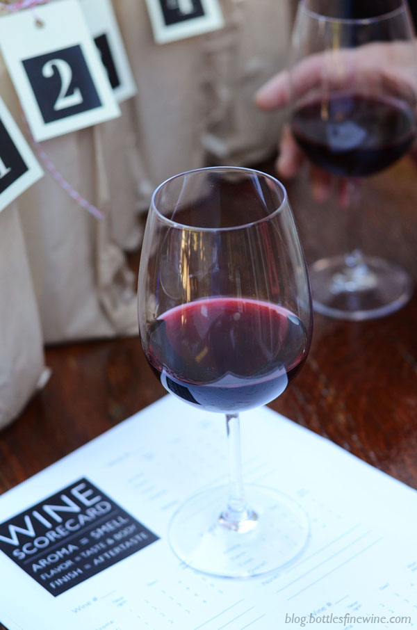 Directions on how to hold a blind wine tasting party