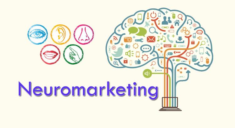 Resultado de imagem para Empresas em NeuroMarketing