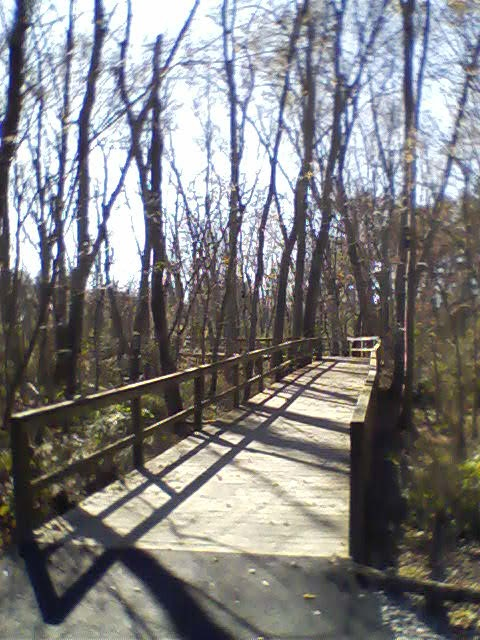 End of the boardwalk opens out onto paved path.