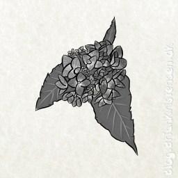 Sketch 0232