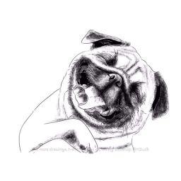 Sketch 0601