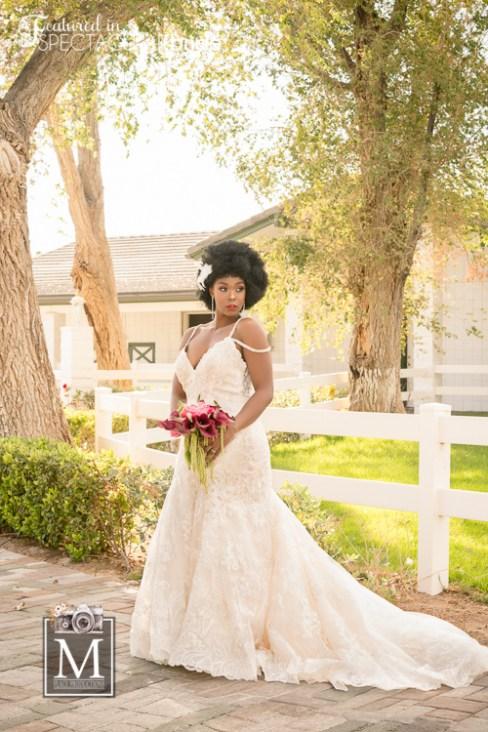 Bridal Spectacular_0007MPlace-Casa-4Models