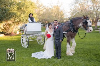 Bridal Spectacular_0654Lily&Jason
